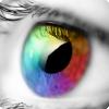 Как именно воспринимает цвета человеческий мозг?