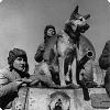 Почему на Параде Победы одну собаку несли на сталинской шинели?