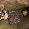 Чем объясняется особый способ захоронения людей — лицом вниз — во многих археологических находках?