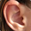 Какую функцию помимо слуха выполняют уши?