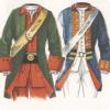 Зачем Пётр I приказал прибивать пуговицы в лицевую сторону рукава солдатского мундира?