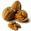Где родной край грецкого ореха?