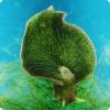 Какое зверек может применять дело фотосинтеза?