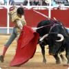 Почему бык на корриде атакует не матадора, а красный плащ?