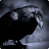 Кем приходятся друг другу ворон и ворона?