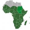Почему многие африканцы практикуют «сухой секс»?