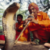 Каким образом заклинатель змей заставляет глухую к звукам дудочки змею танцевать?