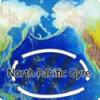 Где находится Восточный мусорный континент?