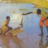 Где живут крокодилы, которых можно погладить?