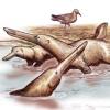 Какие животные в процессе эволюции вышли из воды и вернулись обратно?
