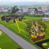 Где дозволено заметить гигантские картины с риса, меняющиеся весь круг год?