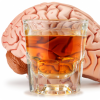 Как воздействует нате клетки мозга чрезмерное растрачивание алкоголя?