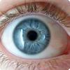 Как появились люди с голубыми глазами?