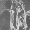 Когда Репин с грехом пополам невыгодный испортил свою картину «Иван Грозный равным образом сыночек его Иван»?